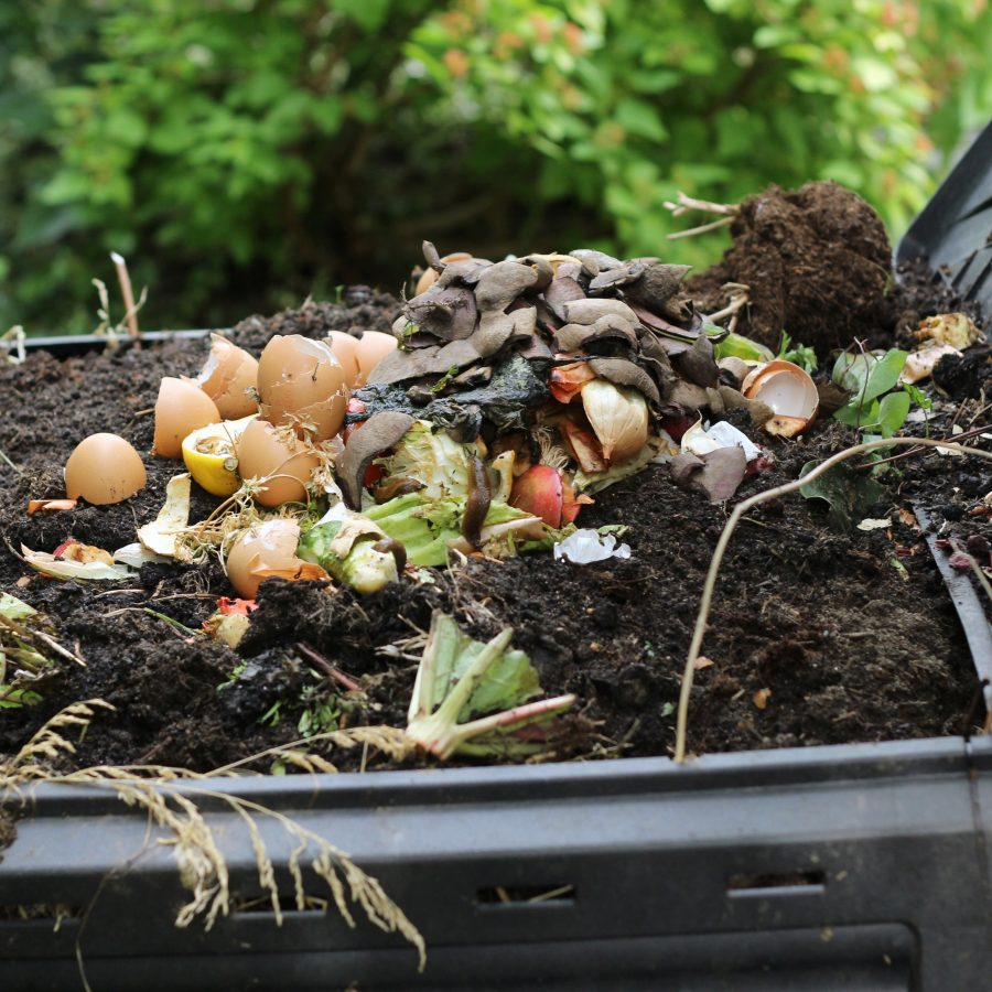 Learning to Compost for Beginners